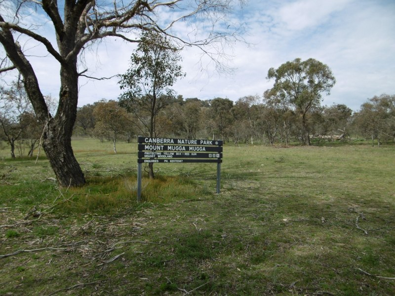 Mugga Mugga Nature Reserve. Photo: Daniel Boyle